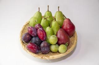 果物C.jpg