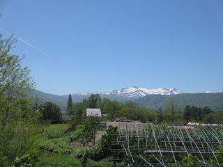 s-暑寒別岳と飛行機雲.jpg